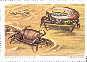 National Wildlife Federation Stamp thumbnail